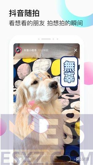 抖音app