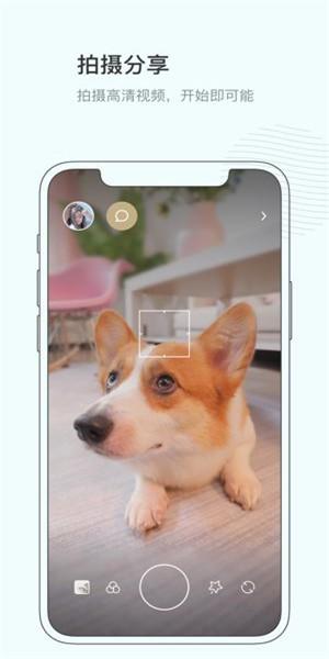 对眼app